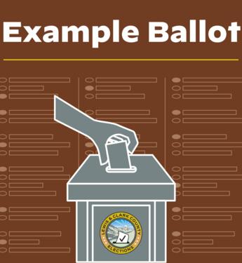 Example Ballot Icon