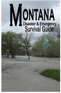 Montana Disaster and Emergency Survival Guide cover images of a flooded city street