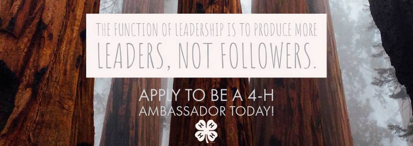 The function of leadership is to produce more leaders, not followers. Apply to be a 4-H Ambassador today! With mighty trees in the background and a 4-H clover below.